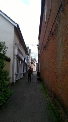 essexdaysoutmanningtreemistleywalk-2