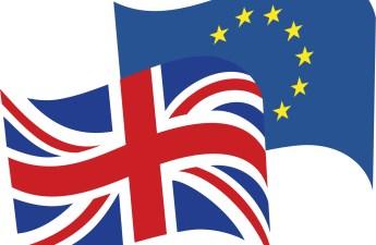 european movement - essex for europe - stop brexit