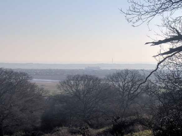 View looking out over Estuary