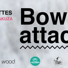 Bowl Attack 2016
