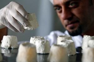 Queijo de leite de jumenta: uma iguaria que custa 1.000 euros