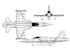 F-5E Tigre. Foto: Especial