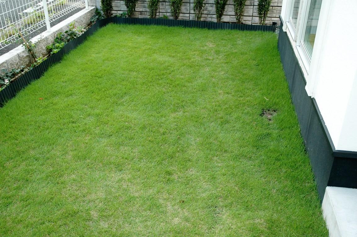 町田市でガーデン施工【芝生とグランドカバー】エクステリア ガーデンEモール