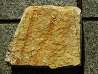 イタリア産の石その1