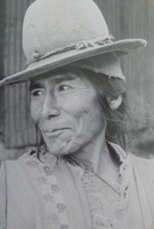 Alegria indígena