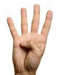 #4. El efecto multiplicador.