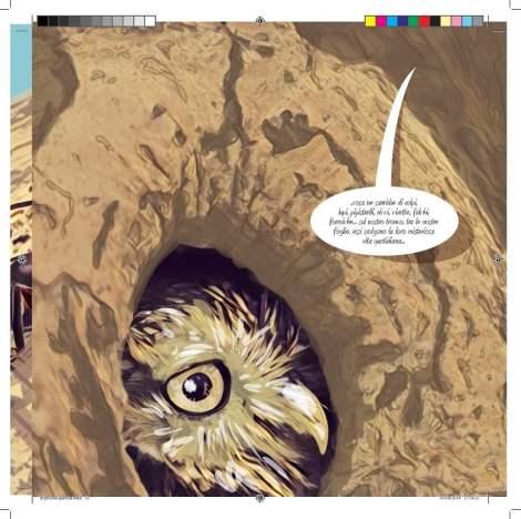Editar e ilustrar un libro