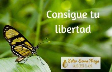Consigue tu libertad post Ester Serra Moya