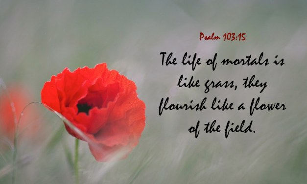 Psalm 103:15