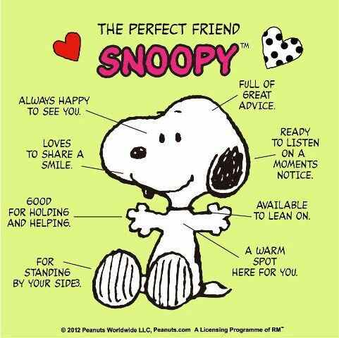perfect friend
