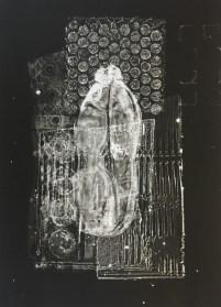 Gelatin Plate Monotype