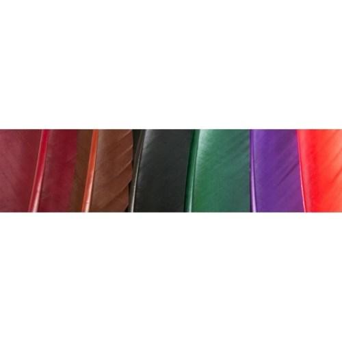 paleta de colores de plumas