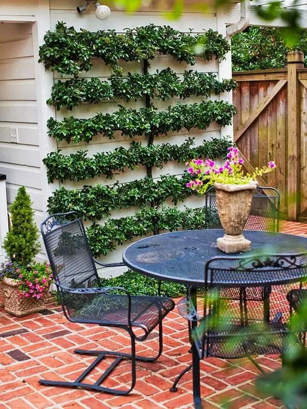Ideas para decorar patios con poco dinero. Decoracion Low ... on Low Cost Patio Ideas id=41632
