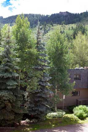 Aspen real estate 052916 142177 119 E Cooper Avenue 27 6 285W