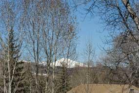 Aspen real estate 071716 143866 232 Vine Street 6 190H