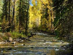 Aspen real estate 072416 141222 805 Snowmass Creek Road 6 190H