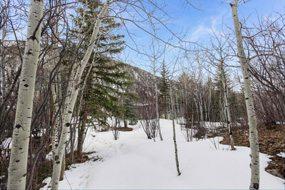 Aspen real estate 103016 143315 143 E Lupine Drive 6 190H