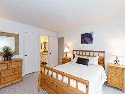Aspen real estate 012917 141642 35 Lower Woodbridge Road Seasons Four 114 4 190H