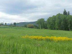 Aspen real estate 012917 146586 0876 Snowmass Creek Road North Parcel Lot 1 6 190H