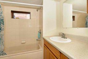 Aspen real estate 020517 145397 228 Cottonwood Lane 5 190H