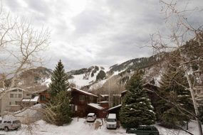 Aspen real estate 042317 147083 124 W Hyman Avenue 2 E 6 190H