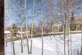 Aspen real estate 043017 146882 425 Wood Road 3 5 190H
