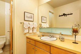 Aspen real estate 051417 146782 105 Campground Lane 102 5 190H