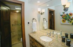 Aspen real estate 100117 149744 202 Meadow Ranch 190H 5
