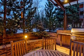 Aspen real estate 100817 141923 101 N Spring Street Unit 103 6 190H
