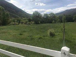 Aspen real estate 100817 149233 2135 Lower River Road 3 190H