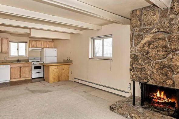 Aspen real estate 102317 143952 124 E Durant Avenue 7 1 590W