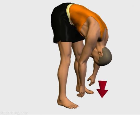 Estiramiento (stretching, streching) recomendado para:  fútbol,  baloncesto,  ciclismo,  atletismo,  senderismo,  snowboard,  voleibol,  golf,  esquí,  correr,  rugby,  balonmano,  fútbol americano,  piernas,  lumbares,  rápidos,  lumbalgia.
