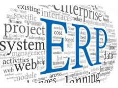 ERP - ¿Realmente una fórmula del éxito?