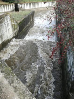 Situazione acque tra il Naviglio Langosco e Roggia Mora