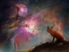 raposa-conjunta-estrela-lenormand