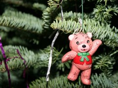 urso-conjunção-árvore-lenormand