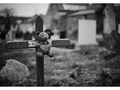 urso-conjunção-cruz-lenormand