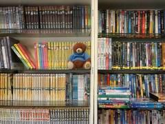 urso-conjunção-livro-lenormand