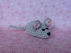 rato-conjunção-estrela-lenormand