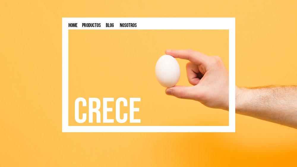 página web crece