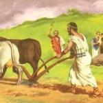 Estudios Sociales- Agricultura Romana