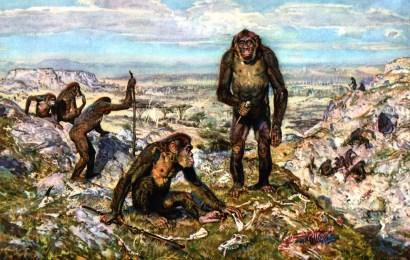 Definicion de La Prehistoria – parte 2