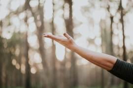 mindfulness tv consciente