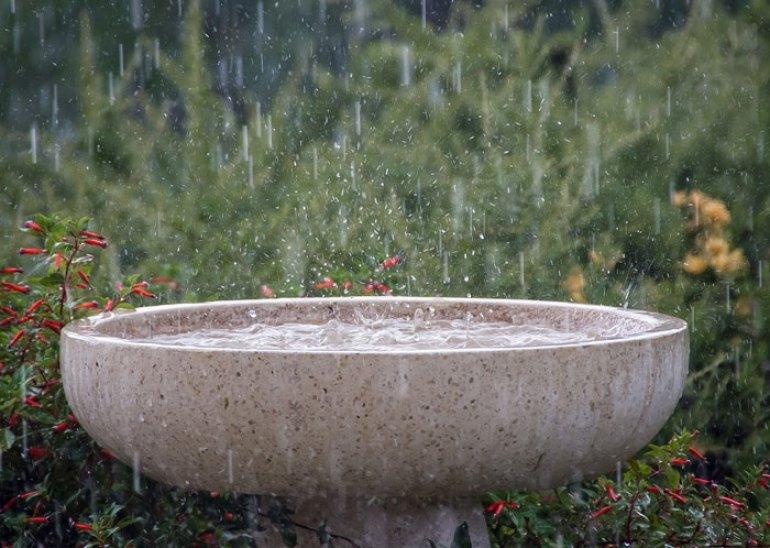 ¿Cómo puedo ahorrar agua en casa?