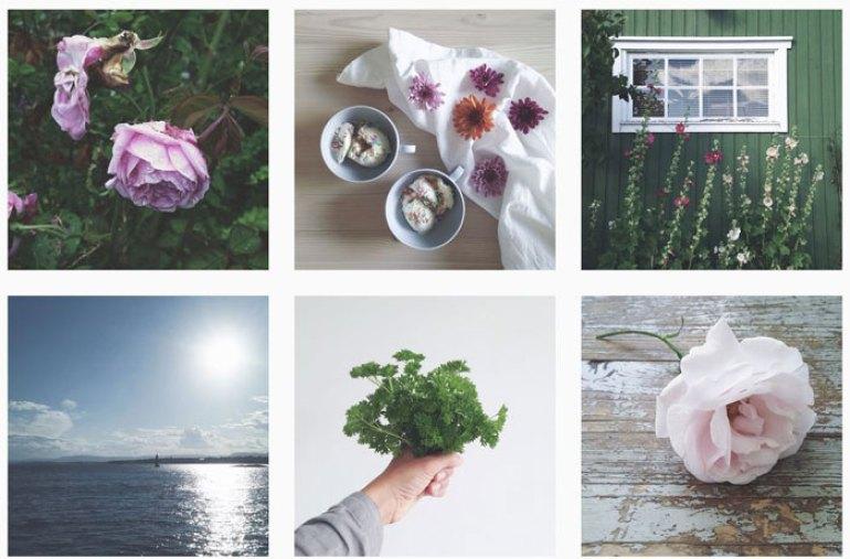 Concurso instagram naturaleza bella #ConcursoNaturalezaBella Esturirafi Umbilical Inspiracion Instagram Verano lailapompel