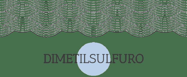 Descubrimiento: 5 blogs ecológicos Dimetilsulfuro