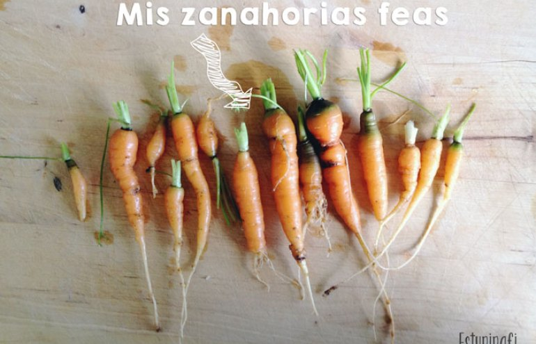 Mis zanahorias feas Esturirafi