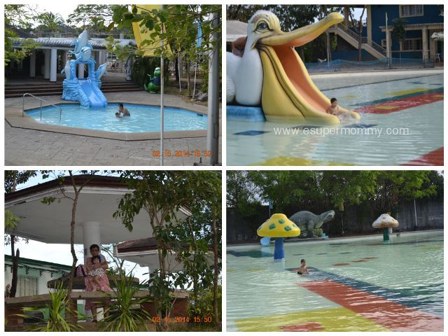 Sitio Lucia Resort Swimming Pool Dolphin