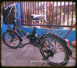 Practical Ride in a Folding Bike