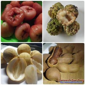 Philippine Fruits during Rainy Season